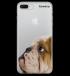 Miniatura - Bulldog Inglês Transparente