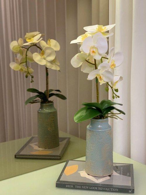 Orquídea branca no vaso azul bebê