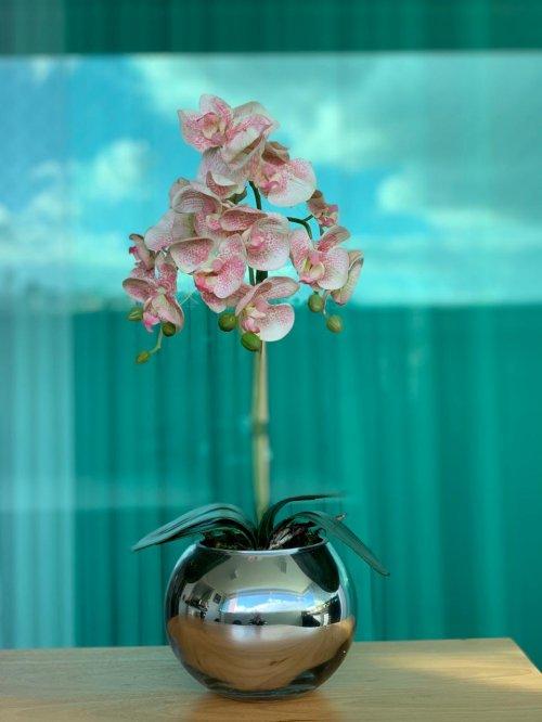 Orquídea rosa claro bowl prata espelhado