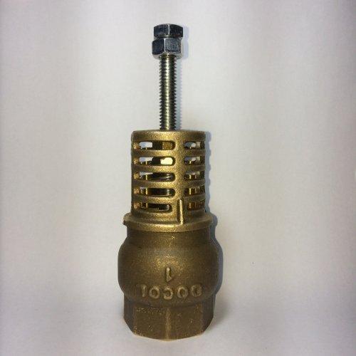 """Válvula de Sucção 1"""" (uma polegada)  - Carneiro Hidráulico"""