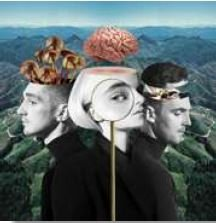 CD - CLEAN BANDIT - WHAT IS LOVE?