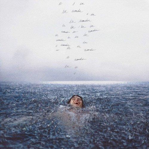 CD SHAWN MENDES -  STANDARD WONDER