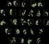 Miniatura - Iniciais Plant Preto Com Seu Nome
